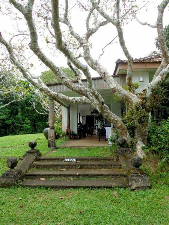 lunugaganga-estate_1711_jpg